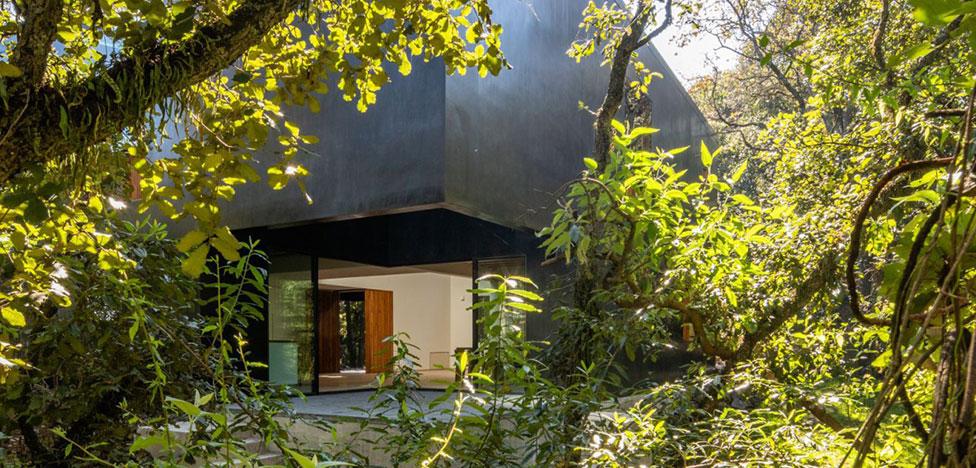 PPAA: дом посреди густого леса в Мехико