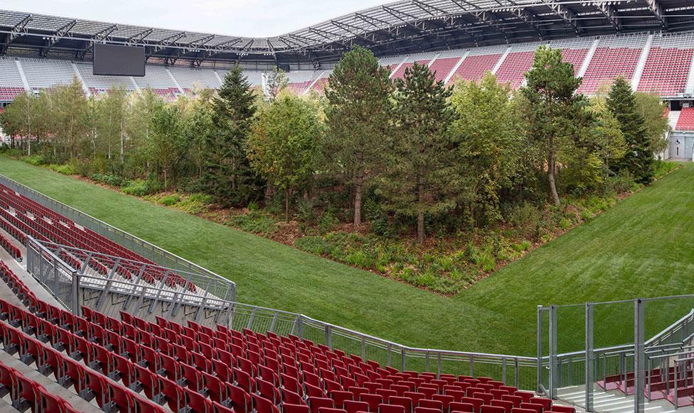 Лес Клауса Литтманна на австрийском стадионе