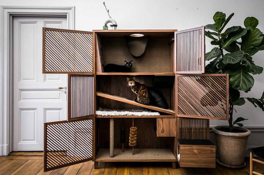Шкаф как лучшая мебель для кошек