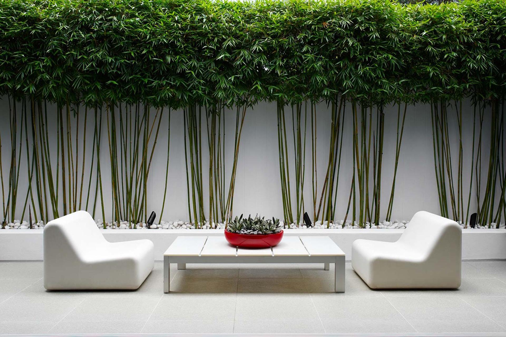 Дом-сад: 40 решений для террас