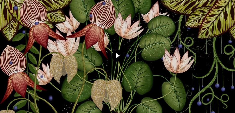 Ботаника: завораживающие видеопроекции Кэти Скотт (Katie Scott)