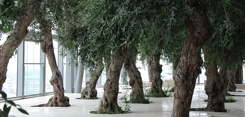 Архитектор Йен Симпсон: оливковый сад на 35-м этаже