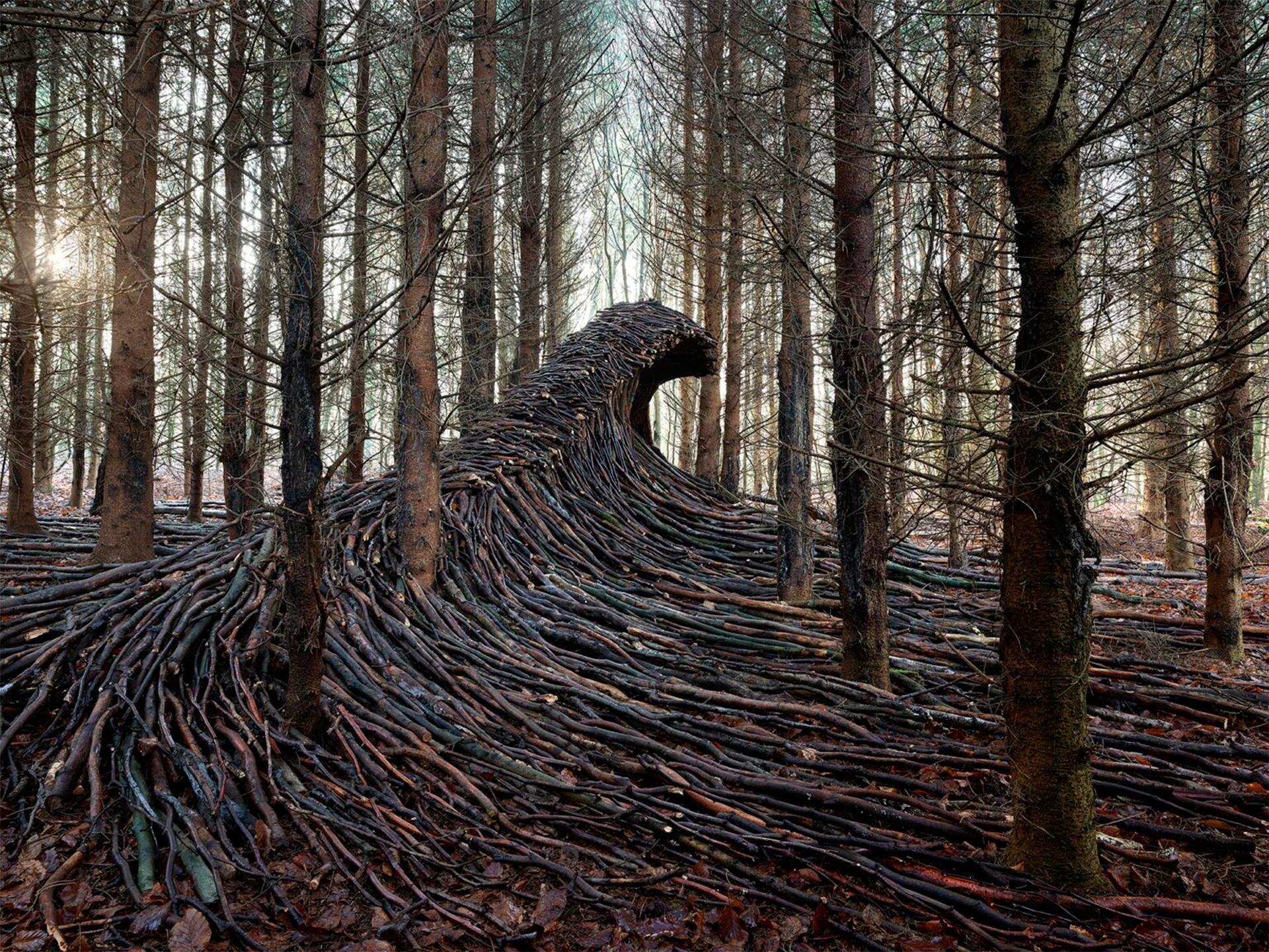 Йорг Глэшер: волны из веток в немецком лесу