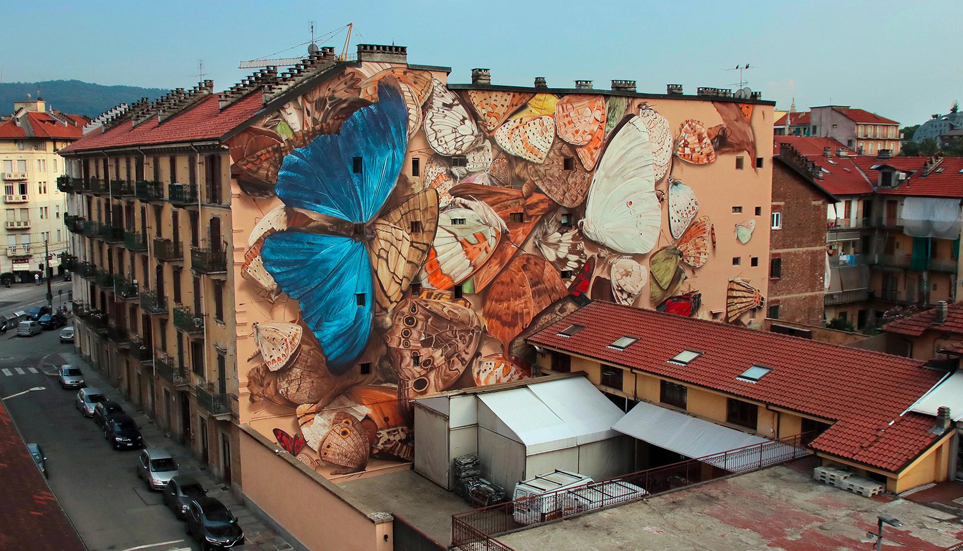 Коллекции бабочек французского художника Mantra