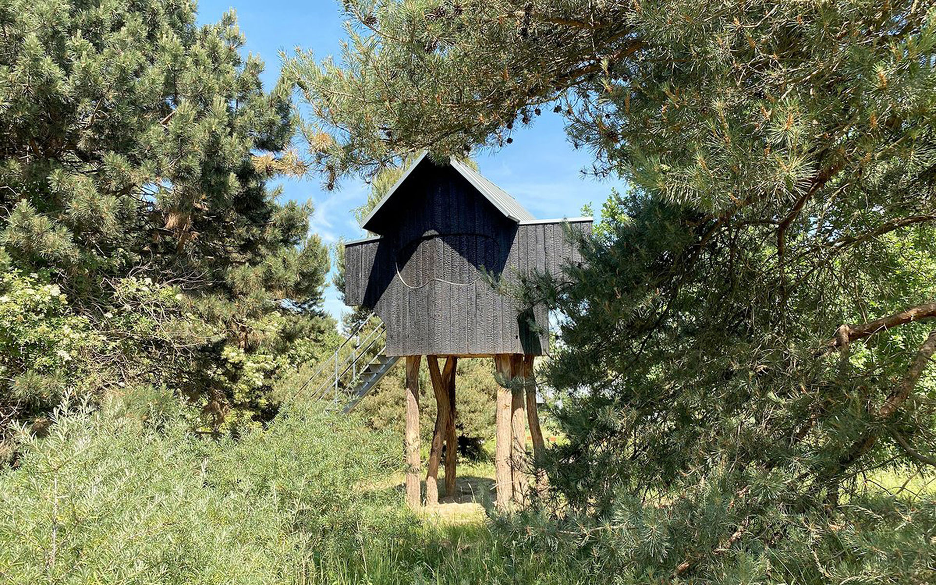 Чайный дом на дереве по проекту Терунобу Фуджимори