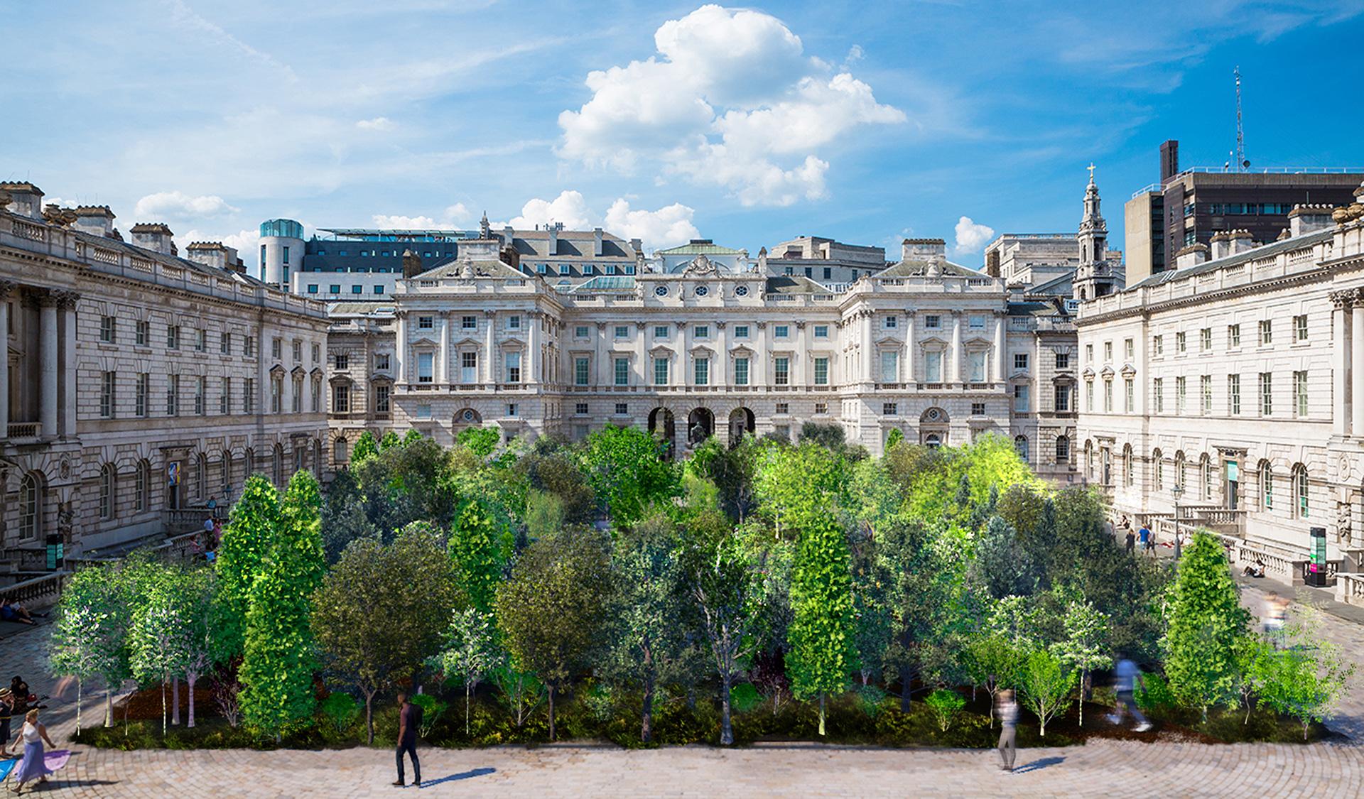 Эс Девлин высадит лес в лондонском Сомерсет-Хаусе