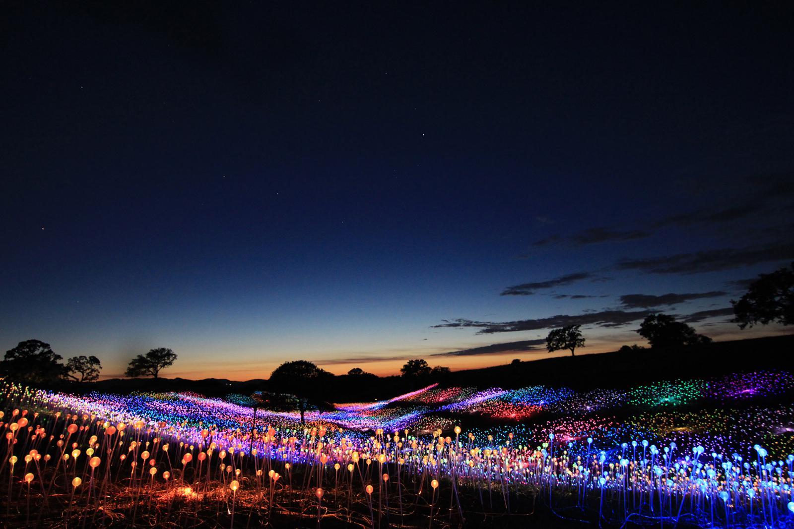 изучение световое поле азия фото сделать окончательный выбор