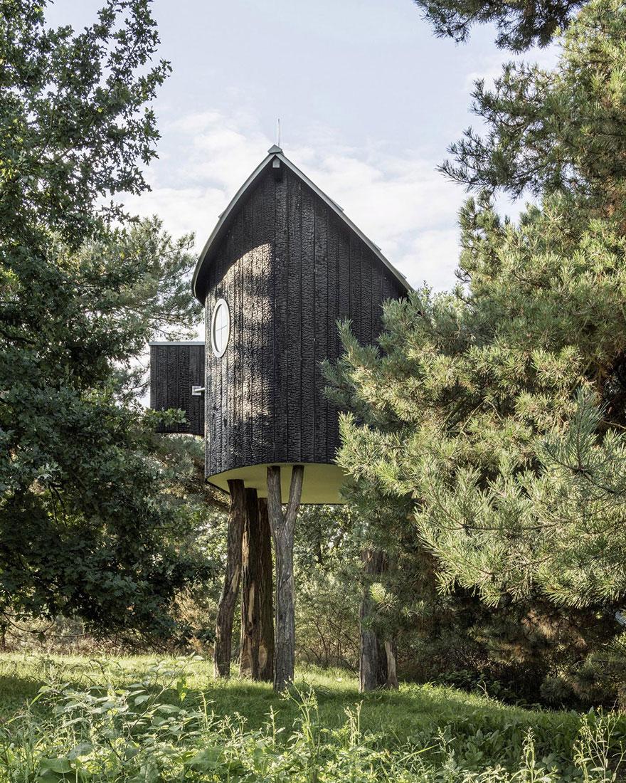 Дом на дерево фото