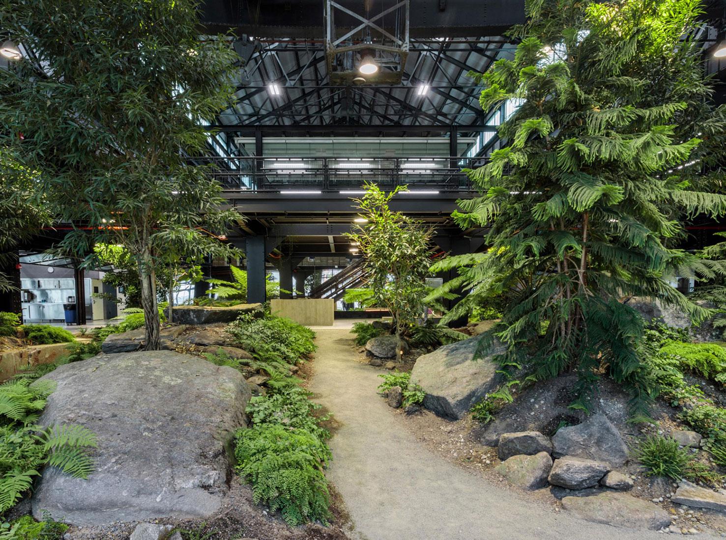 Зеленый офис фото