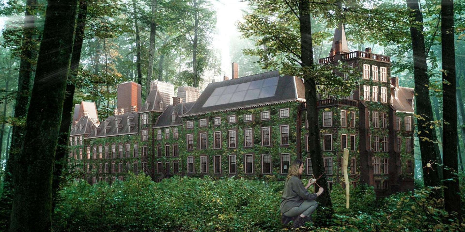 Голландская неделя дизайна 2020 фото