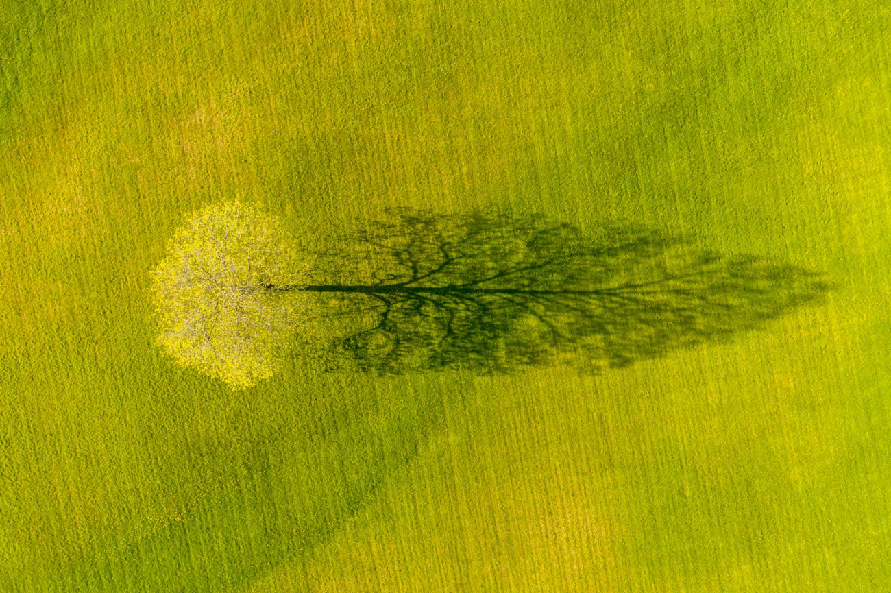 Лучшие фотографии с воздуха фото
