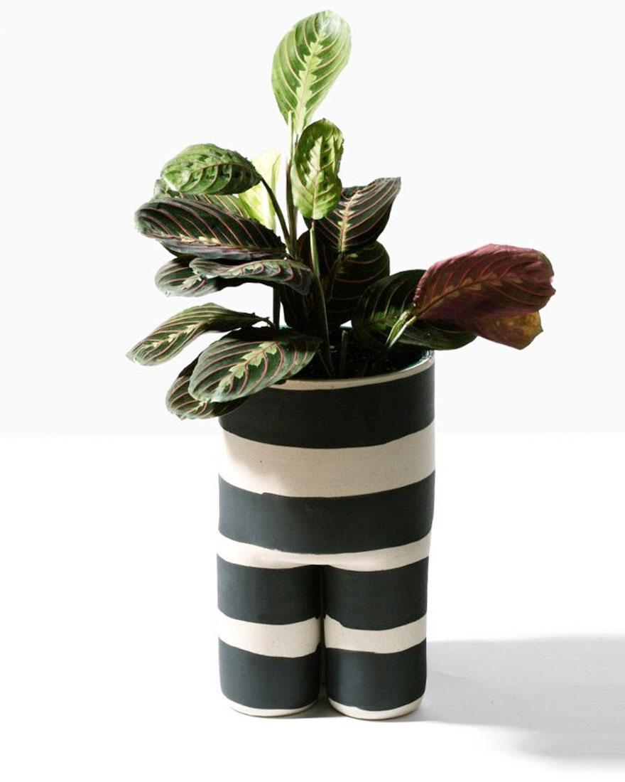 Дизайн для растений фото