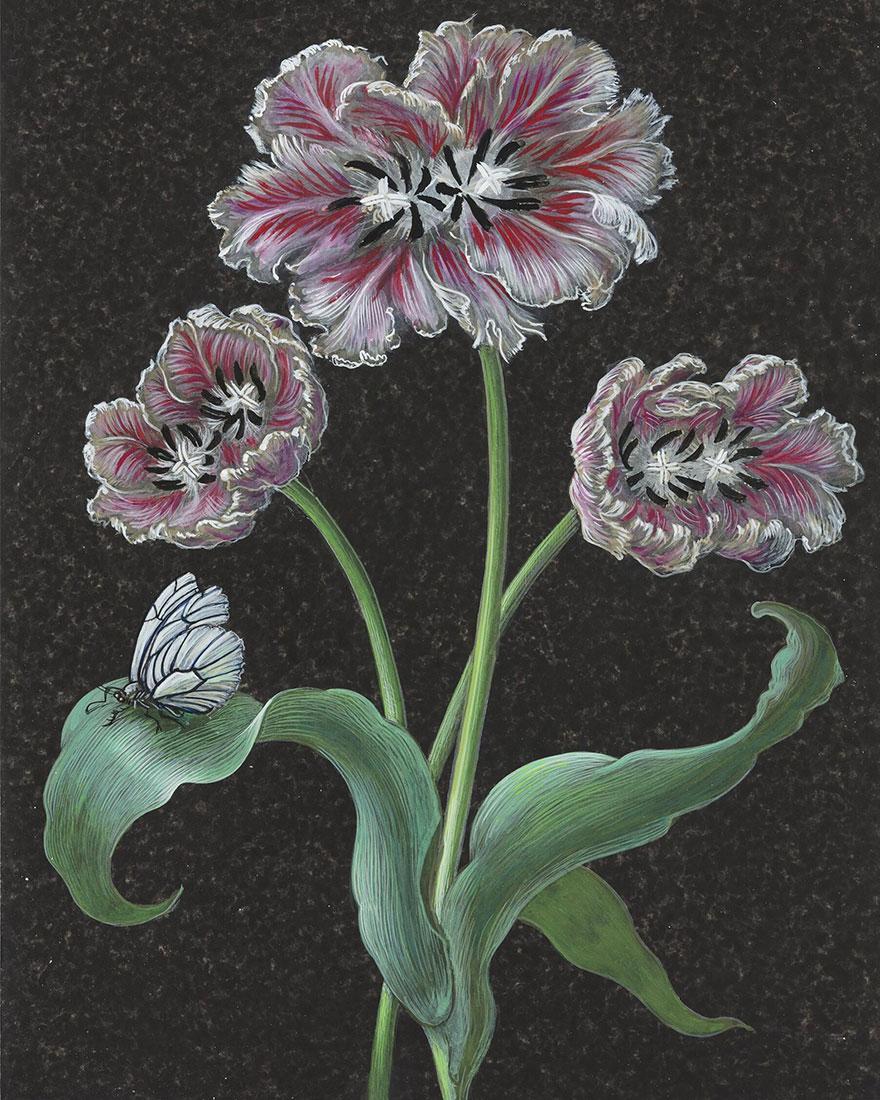 Рисунки цветов фото