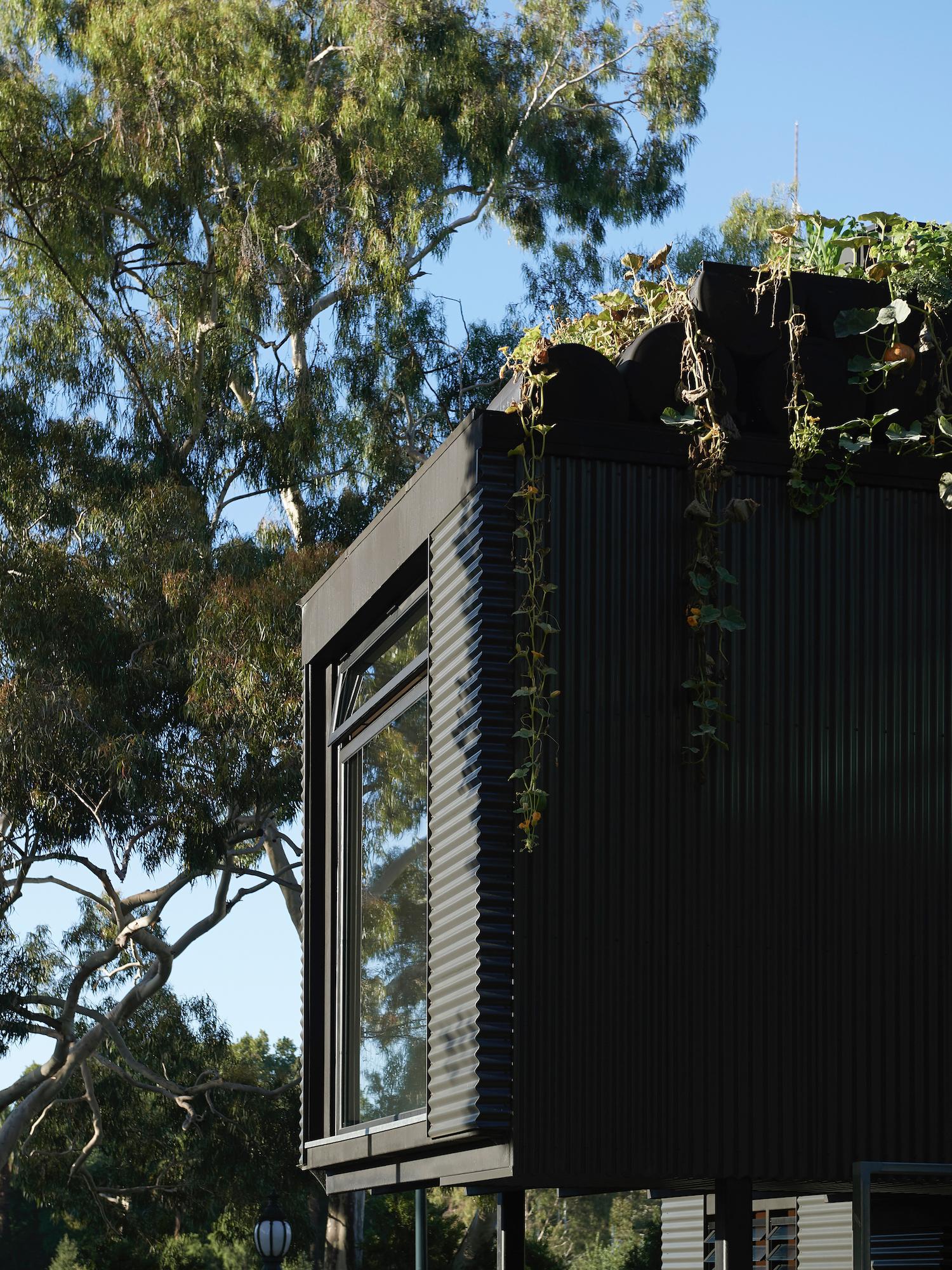 Экологичная архитектура фото