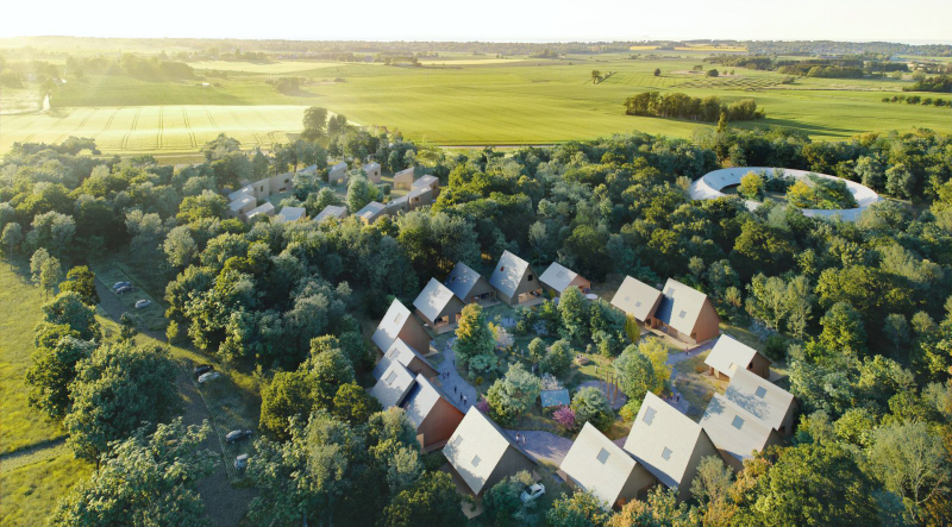 Биеннале 2021: датский проект лесной жизни