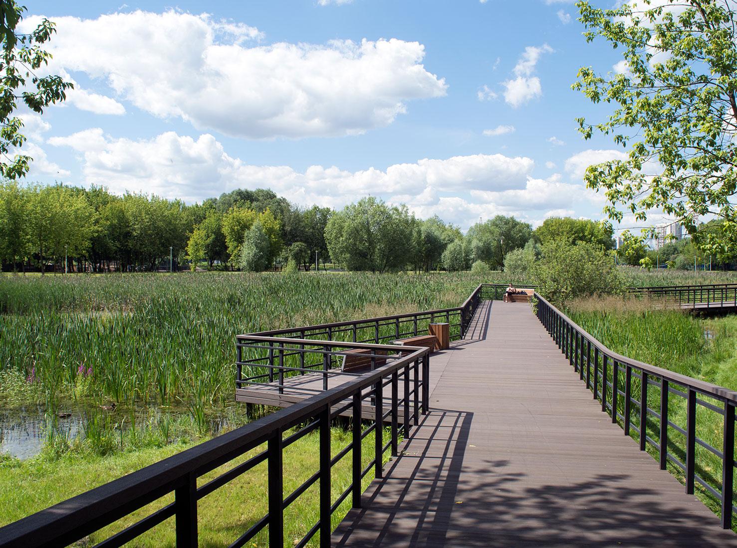 Новые парки Москвы фото