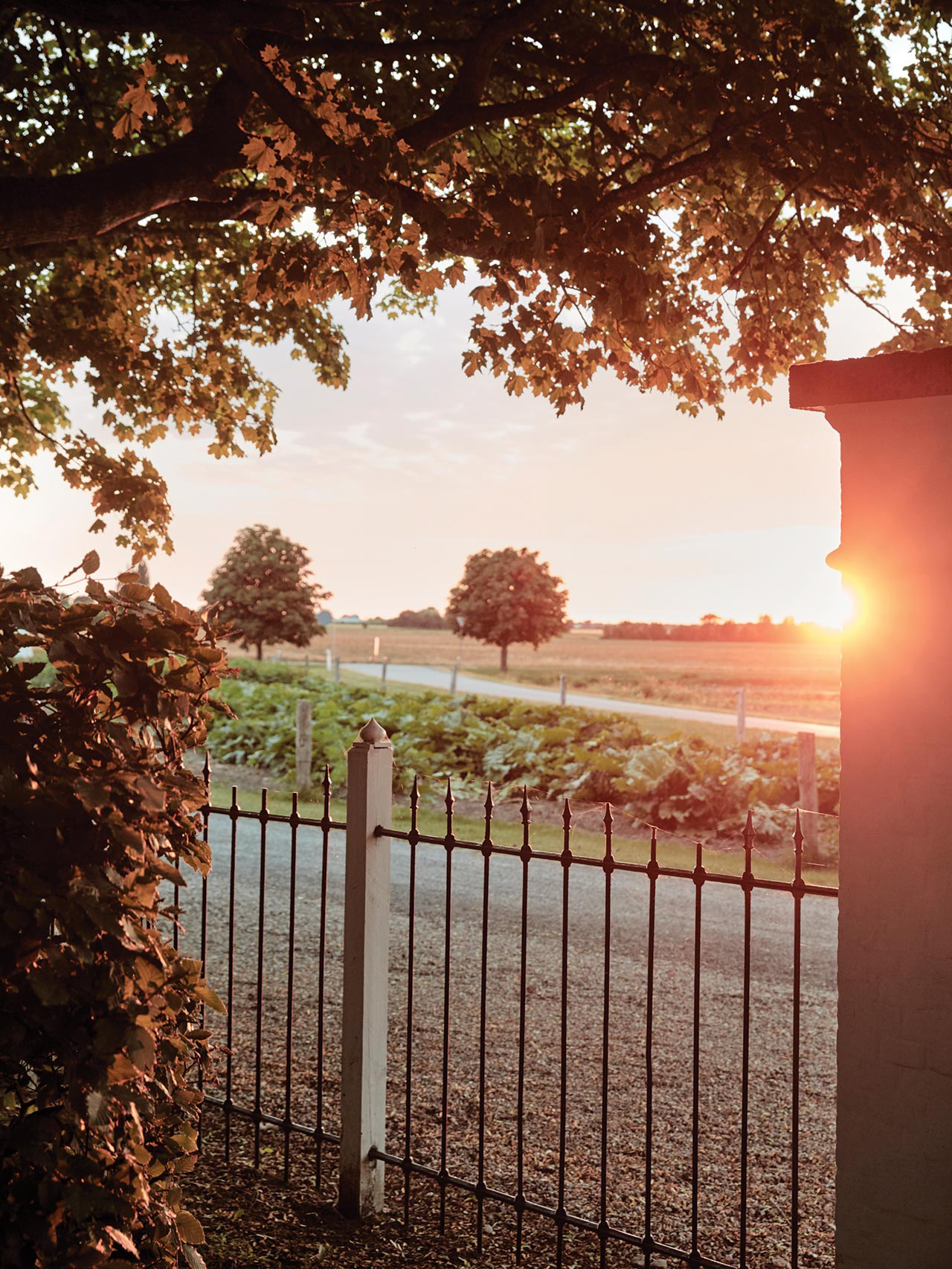 Отель Vipp Farmhouse фото