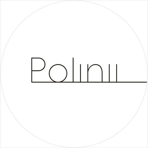 Студия Polinii лого фото