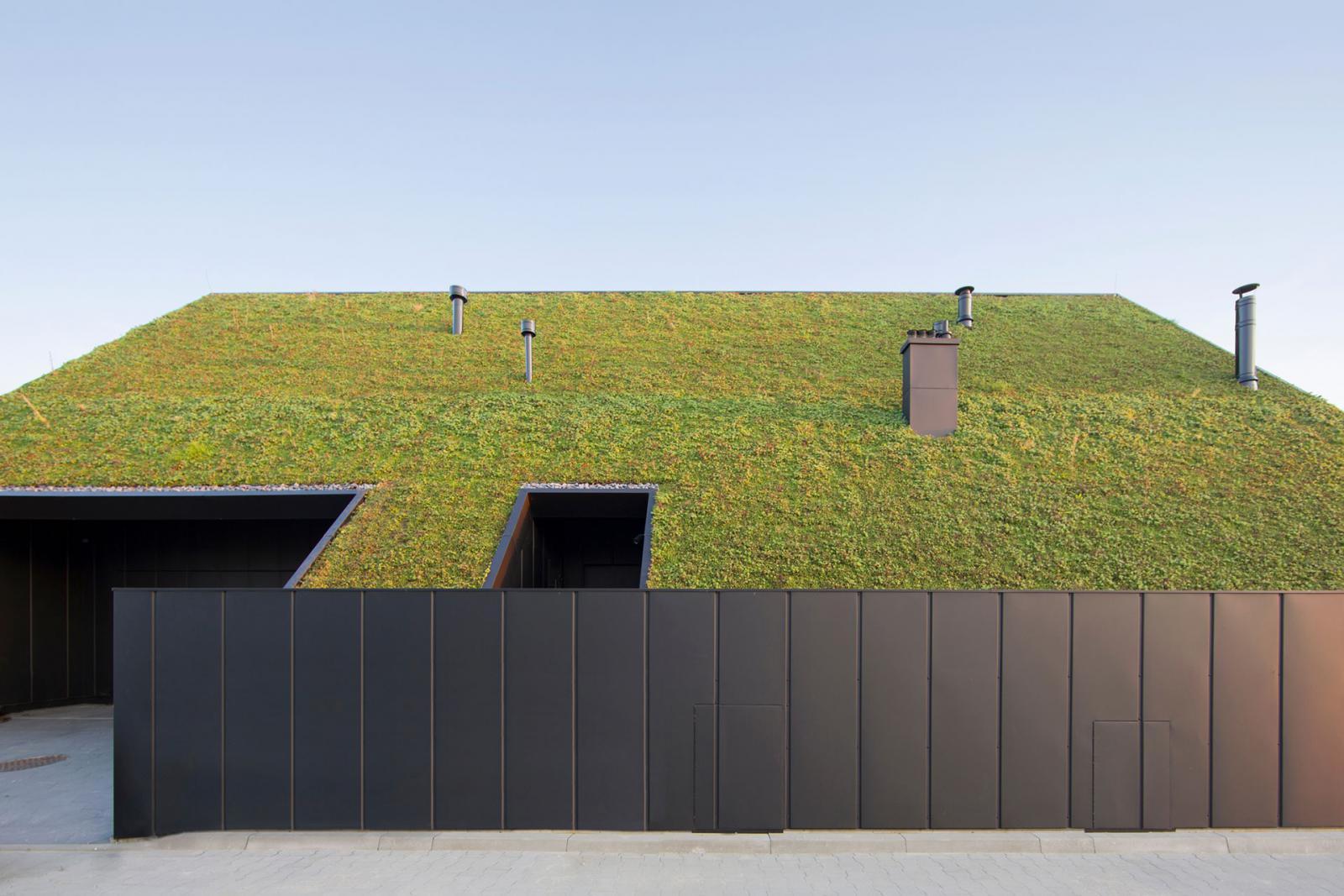 Дом под зеленой крышей