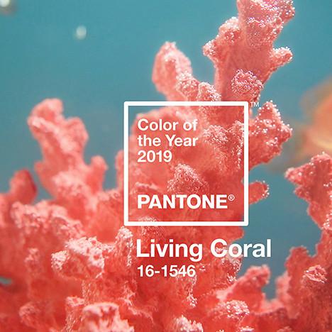 Цвет 2019 года по версии Pantone