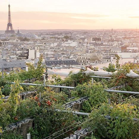 Тайный сад на крыше Galeries Lafayette