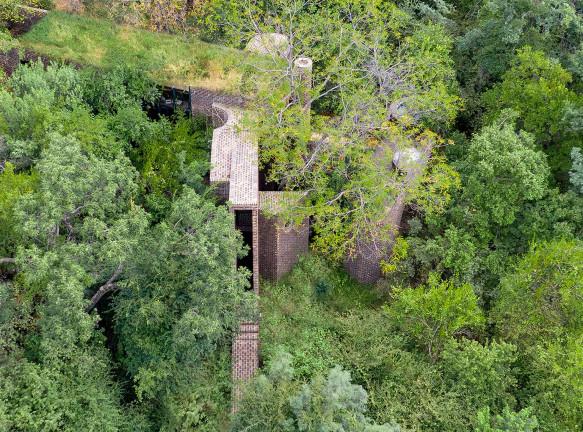 Frankie Pappas: дома, спрятанные в лесу