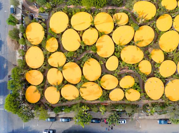 Кампус в самом зеленом парке Лос-Анджелеса по проекту SelgasCano