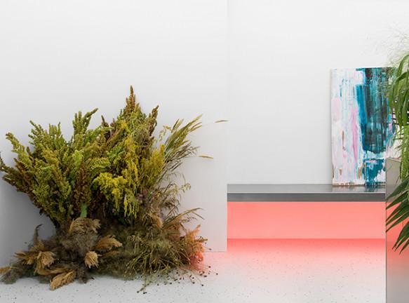 Эдуард Еремчук: цветочный минимализм