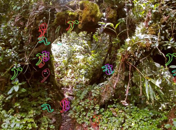 Растения в онлайн-проекте Camden Art Center