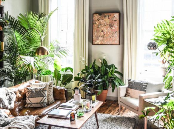 Биофилия: 300 комнатных растений в квартире Хилтона Картера