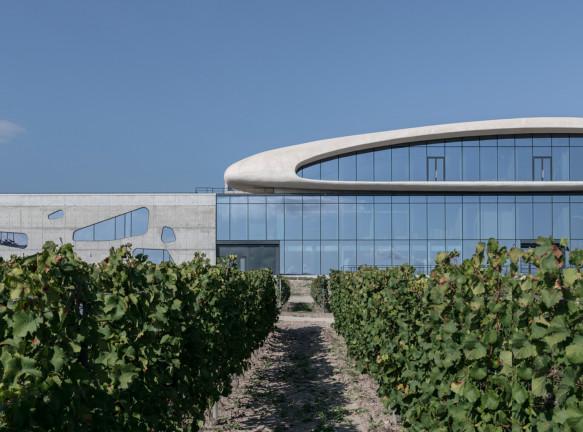 Винодельня Côte Rocheuse на черноморском побережье
