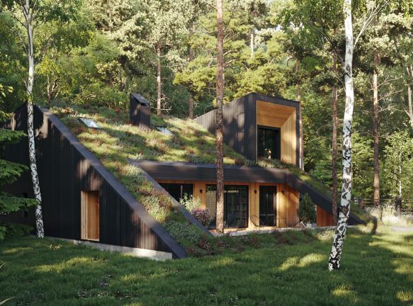 Органичный дом с зеленой крышей по проекту бюро Snegiri Architects