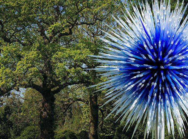 Дейл Чихули: размышления о природе в лондонском саду