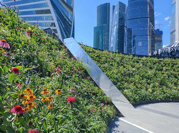 5 новых садов Москвы