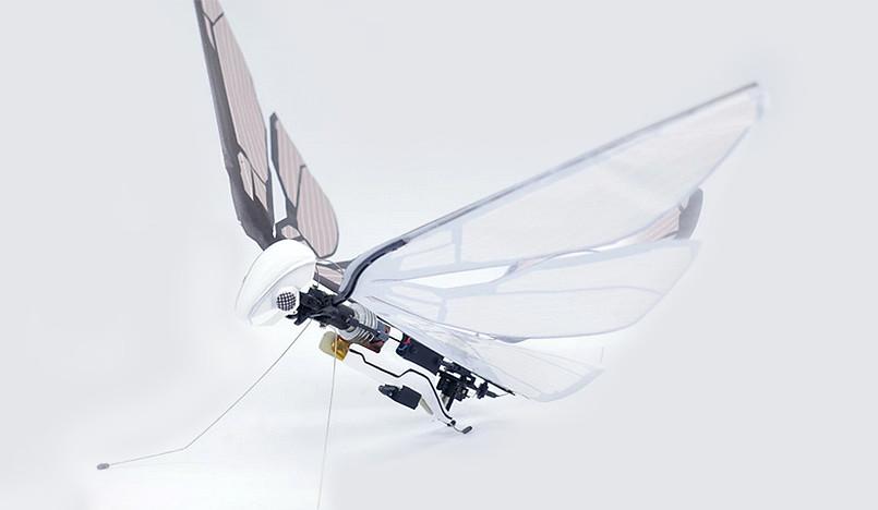 Робот-бабочка Эдвина Ван Рюмбеке