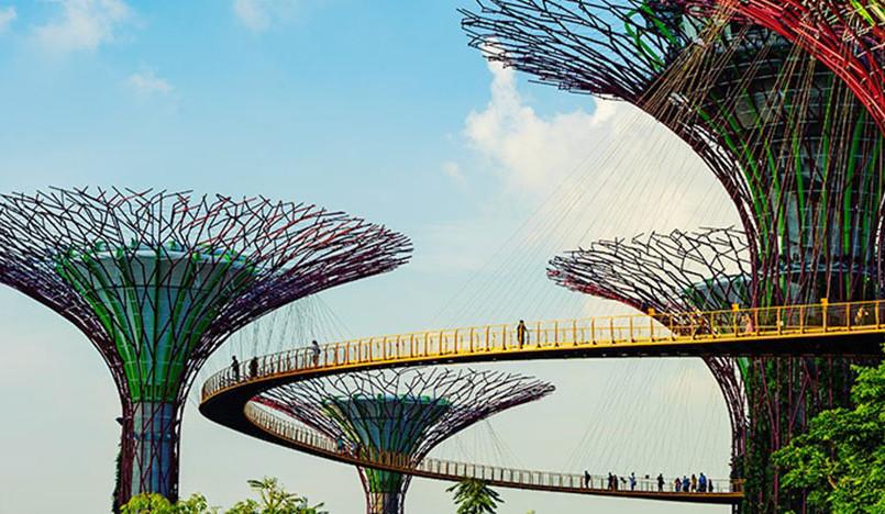 Cемь дней для дизайнеров в Сингапуре