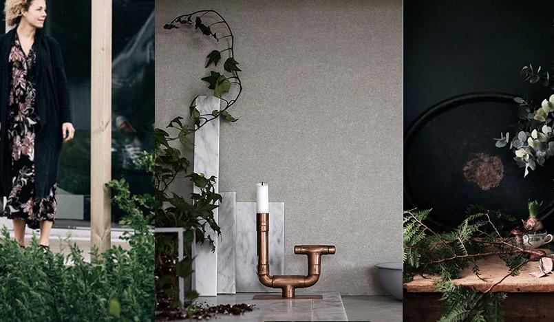 Даниэла Витте: растения в интерьере