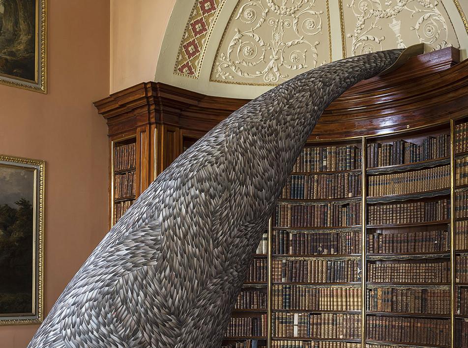 Кейт МакГуайр: скульптуры из голубиных перьев