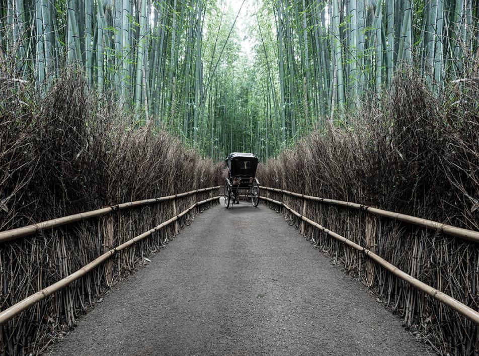 Идеальный мир в объективе фотографа Густава Виллайта