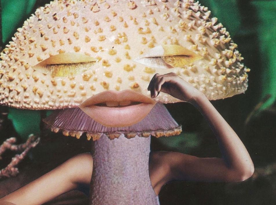 Будущее грибной культуры на выставке в Лондоне