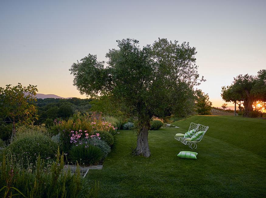 Дому и саду Триши Гилд в Умбрии посвятили книгу