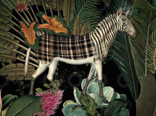 Moooi и Музей вымерших животных: бэкстейдж выставки