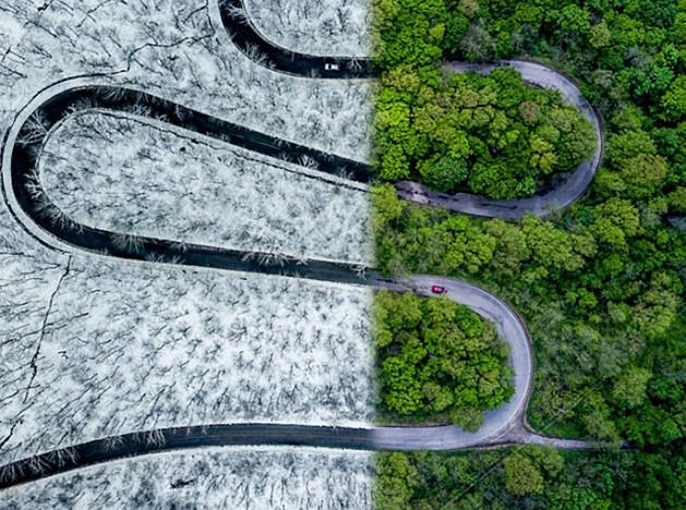 Фотография и дроны: лучшие кадры 2018