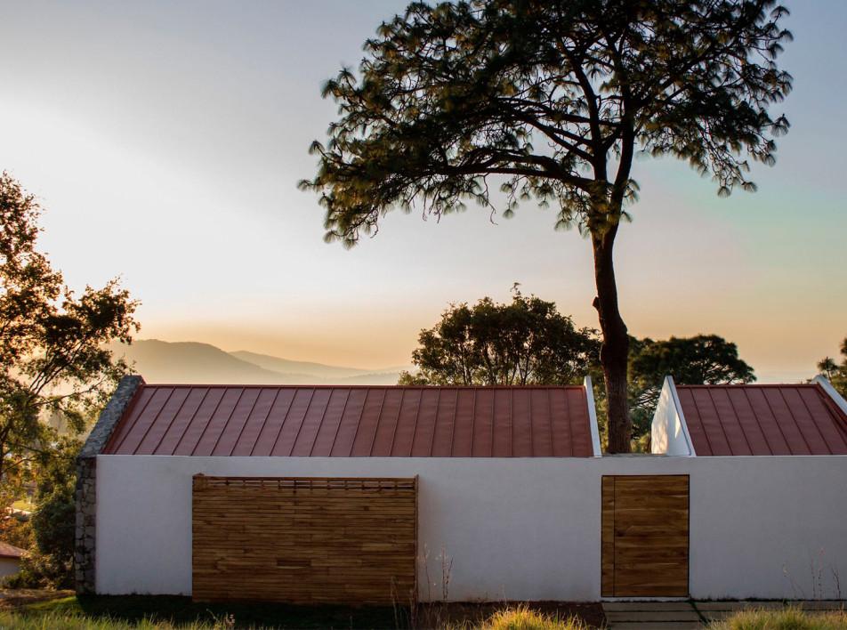 Дом вокруг высокой сосны в Мексике