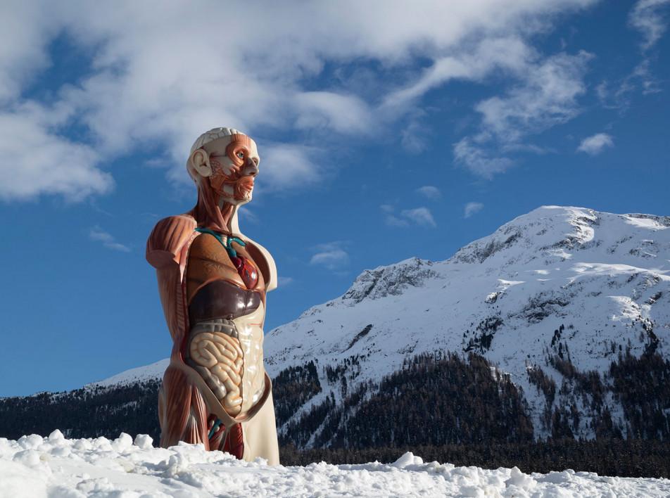 Первая выставка Дэмиена Херста в Швейцарии