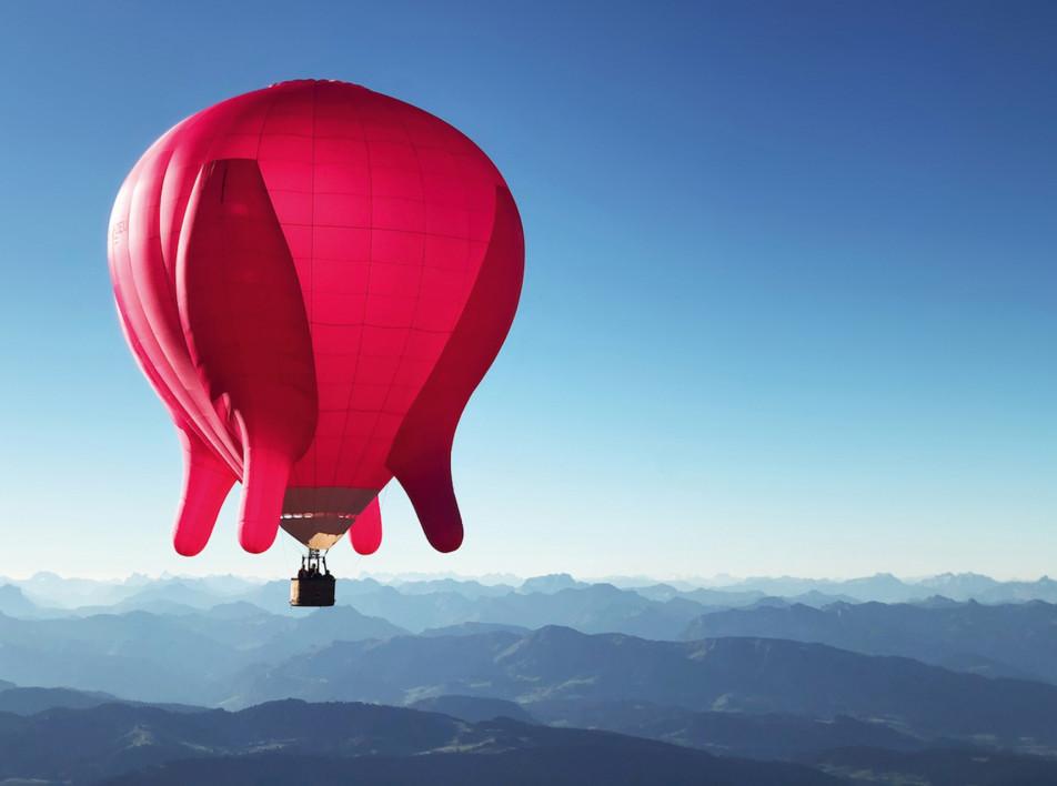 «Летающее вымя»: проект Барбары Анны Хузар