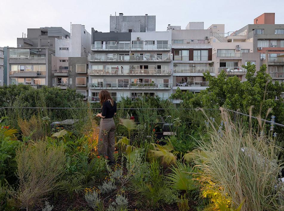 Ана Смад и Daniel Zelcer Studio: квартира на крыше в Буэнос-Айресе