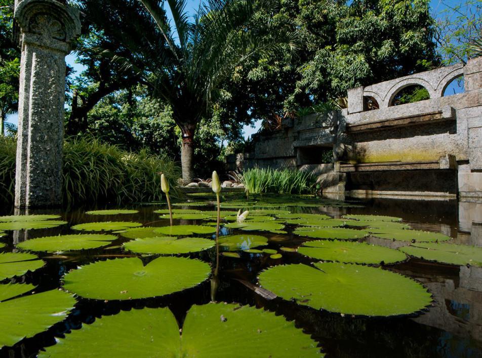 Поместье Роберту Бурле Маркса вошло в список объектов Всемирного наследия ЮНЕСКО