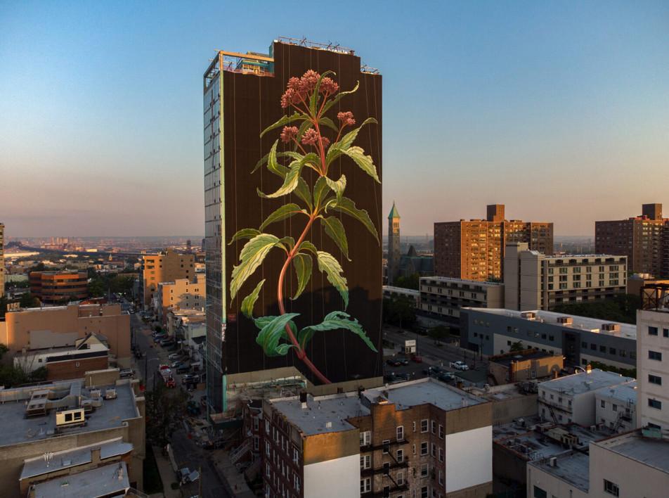 Мурал на многоэтажке в Джерси-Сити