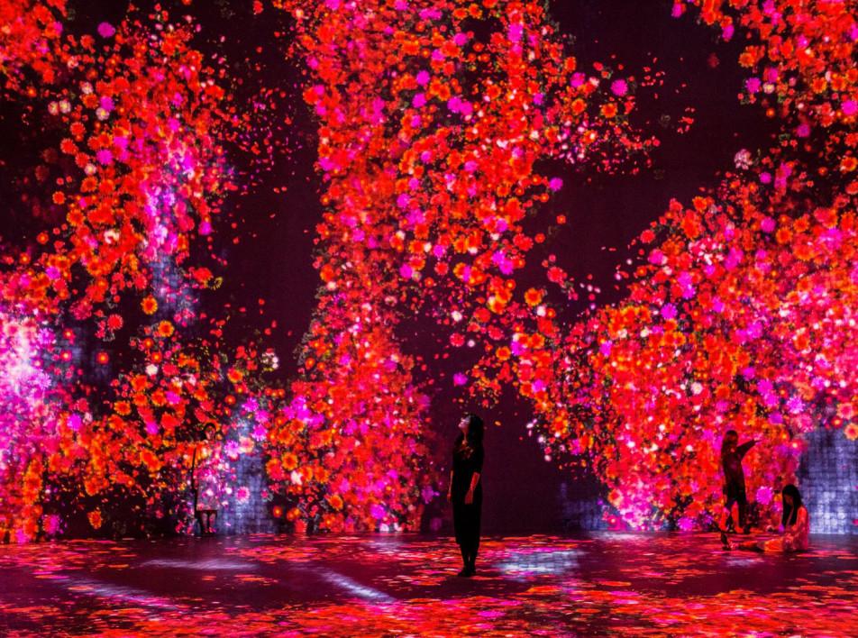 Aрт-центр Superblue: пространство иммерсивных инсталляций для нового поколения
